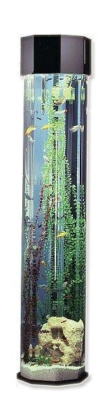 Cool fish tanks vertical vertical fish tank the long for Vertical fish tank