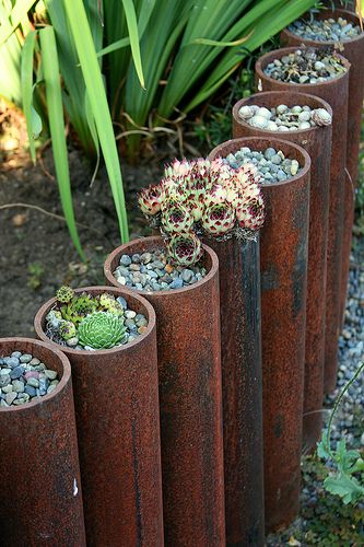 metal tube planters, I did this with some old rusted pipe caps with hens & chicks!