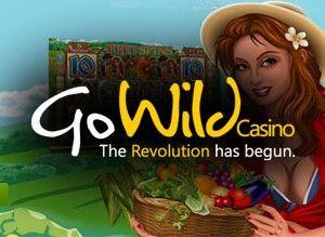 go wild casino login