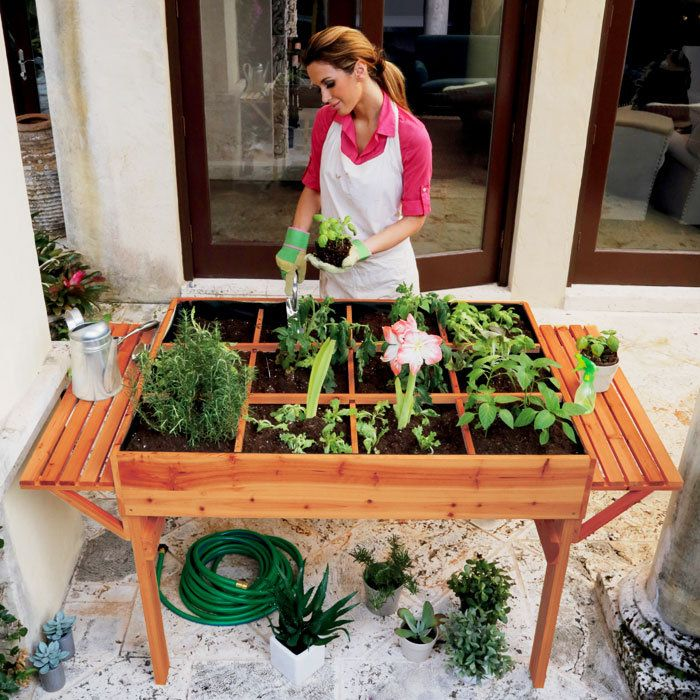 This organic garden table offers a convenient way for beginners to start an edible garden. Brookstone.com