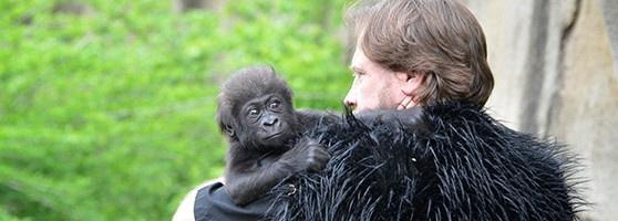 cincinnati zoo father's day