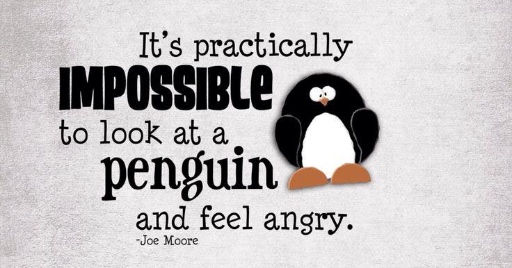 Penguin Love Quotes Tumblr Digitalspace Best Penguin Love Quotes