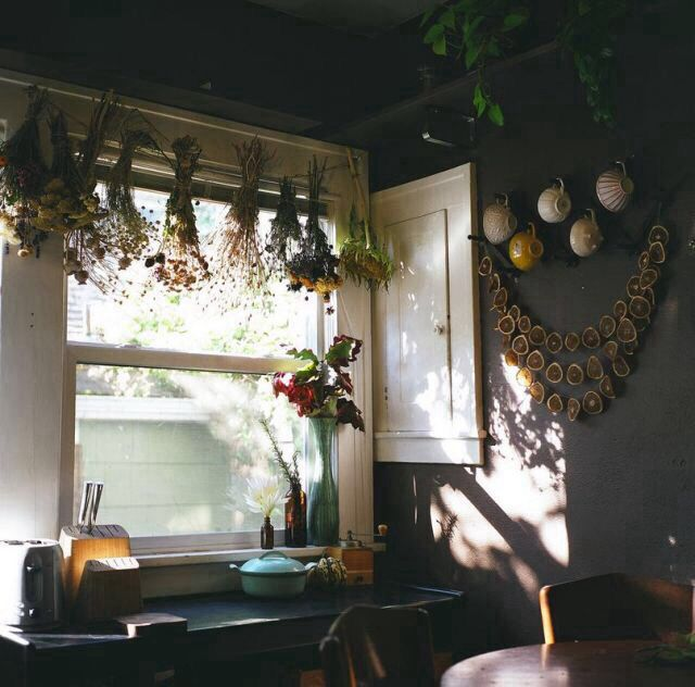 Drying Herbs In Kitchen Window Home Decor Pinterest