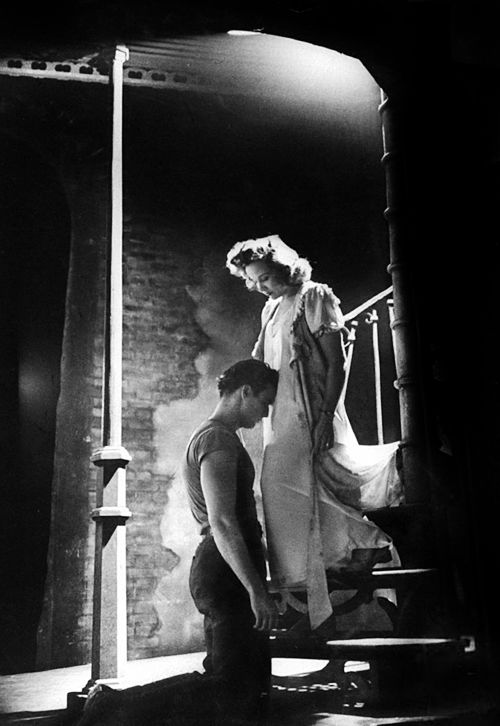 a streetcar named desire tennessee williams s The role of sexuality in tennessee williams´ a streetcar named desire - kira wieler - term paper - english language and literature studies - literature - publish your bachelor's or master's thesis, dissertation, term paper or essay.