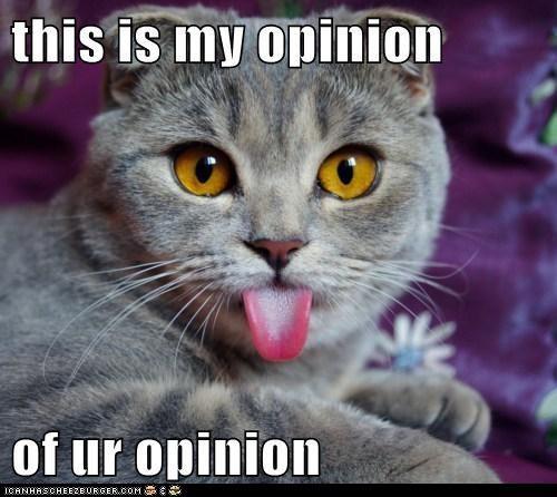 My opinion...