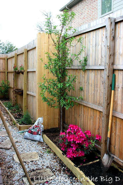 Planter boxes up against fence  outdoors  Pinterest