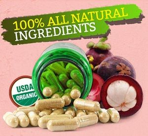 Real Weight Loss - Garcinia Cambogia Select Nutrients
