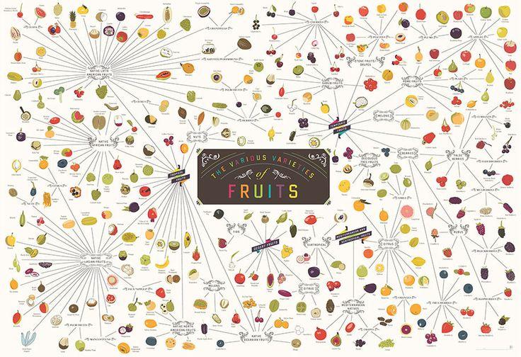 The Various Varieties of Fruit