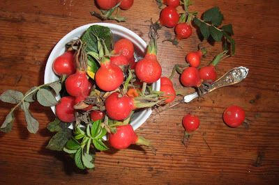 Preserved and Pickled: ROSE HIP JELLY | salads and dressings | Pinter ...