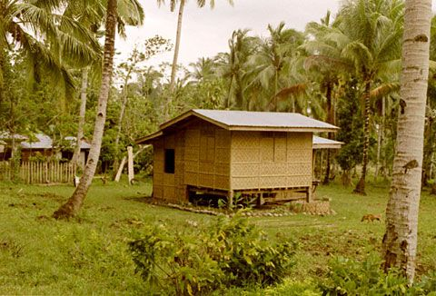 House made of bamboo | Philippines Daily Life | Pinterest