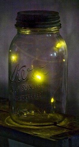 fireflies in mason jar mason jars pinterest. Black Bedroom Furniture Sets. Home Design Ideas