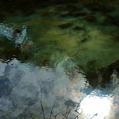 Brackish water interesting fotos from the nets pinterest