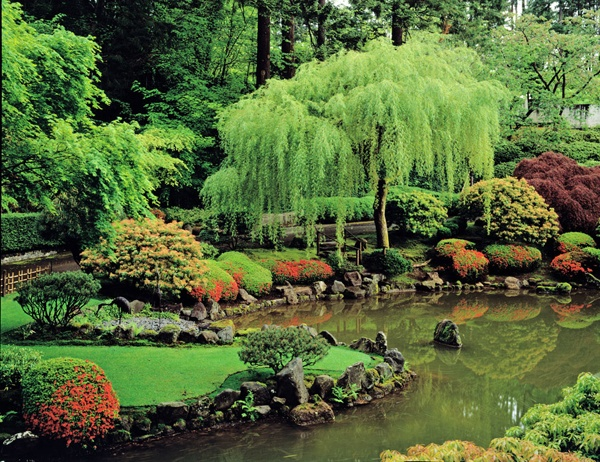 Japanese garden pond beautiful lovely things pinterest for Japanese garden pond design