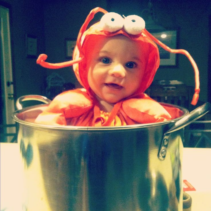 Lobster Baby Halloween Costume Nothing But Happiness