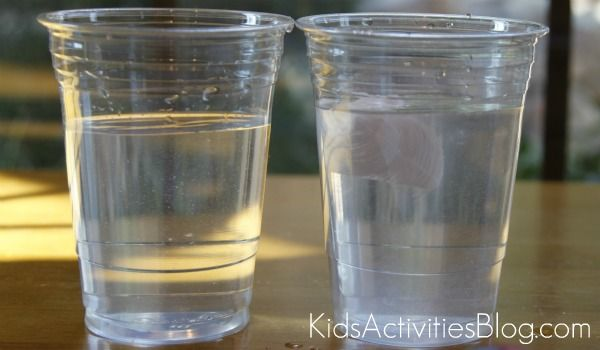 salt and water experiment