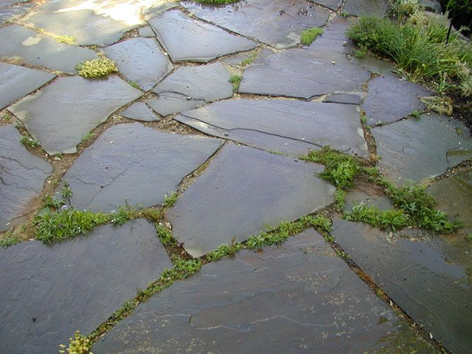 Slate Stone Julie : Irregular flagstone patio