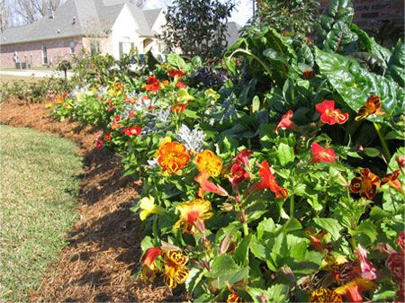 Flower bed landscaping ideas for Flower bed landscaping ideas