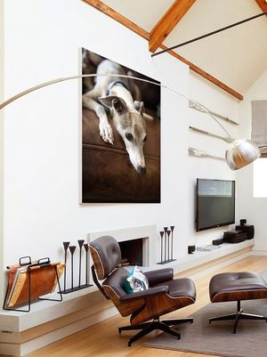 ..... decorated your home with your pet's portraits.""