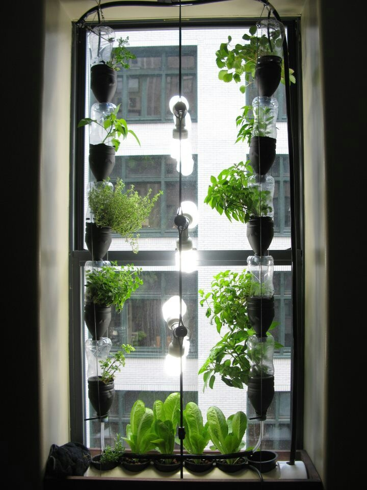 Window garden hydroponics gardening pinterest for Garden window