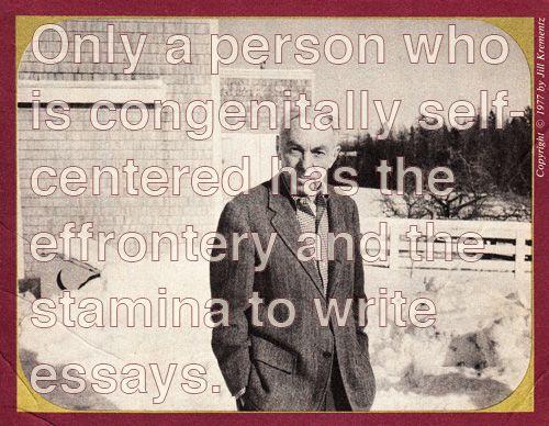 White e. b. the essayist and the essay