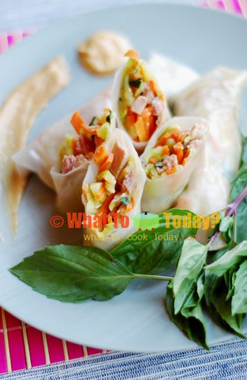 VEGETABLE SPRING ROLLS WITH COCONUT AND PEANUT DIP (about 12 spring r ...