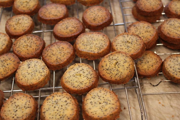Orange Scented Poppy Seed Cookies ©2013 The Conscious Kitchen