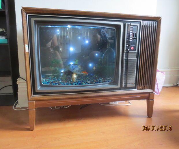 TV Fish Tank \ Aquarium style Chlorophyll Pinterest