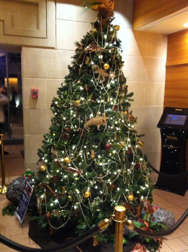 Christmas Tree Brisbane