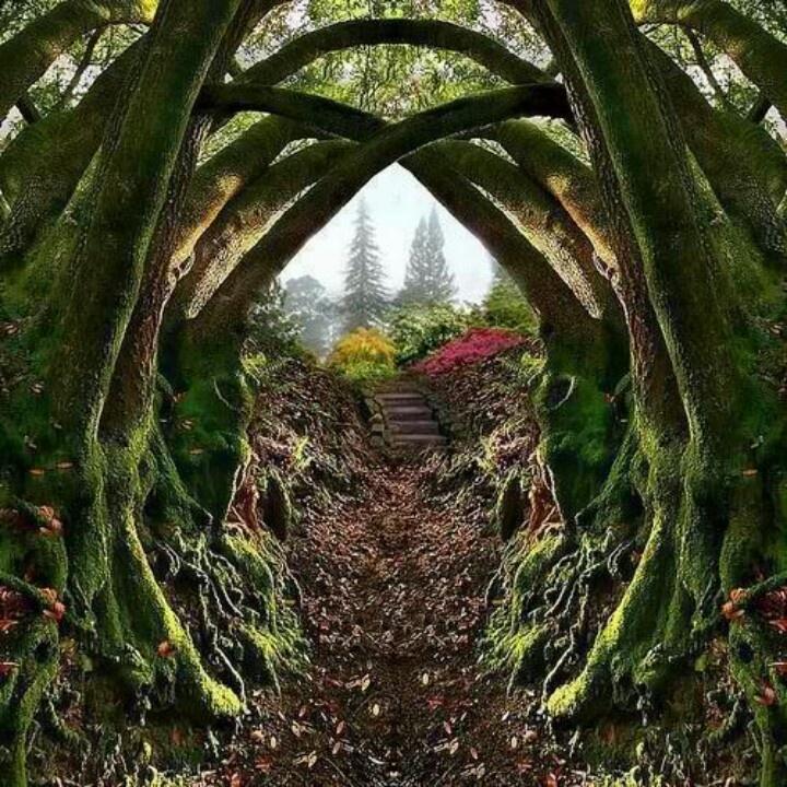 Secret Garden Portland Oregon Art Ideas Pinterest