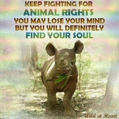 Keep fighting!!!!