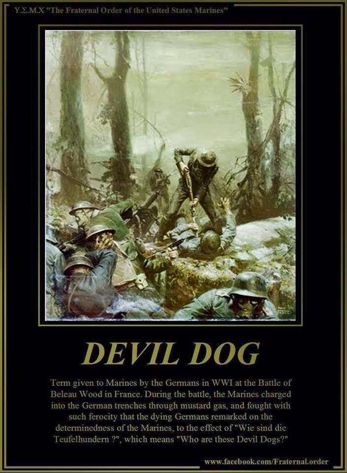 devil dog usmc mindset us marine corps pinterest