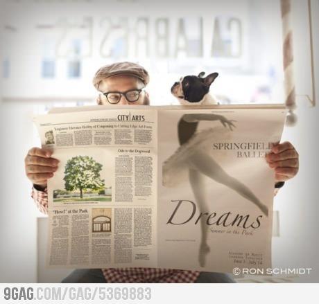 Dog's Ballet Dream