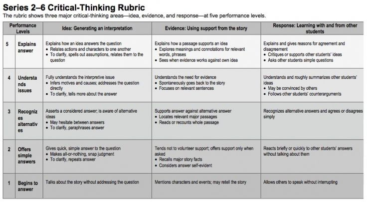 INSTRUCTIONS FOR WRITING A CRITICAL THINKING