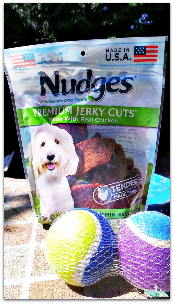 4th of july dog treat recipes