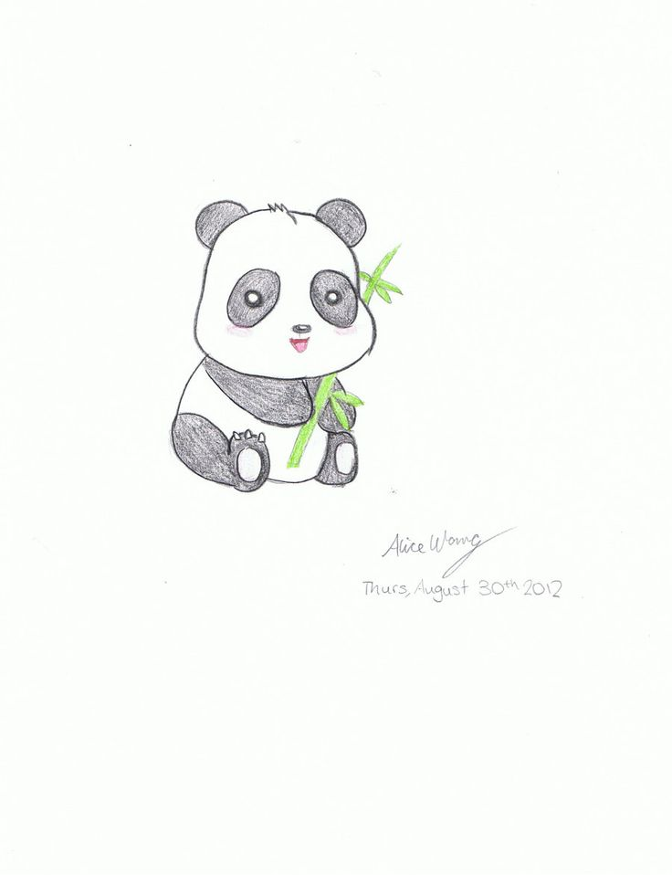 Birthday panda drawing