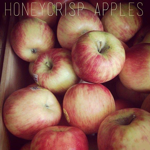 Apple cheddar scones | Favorite Recipes | Pinterest