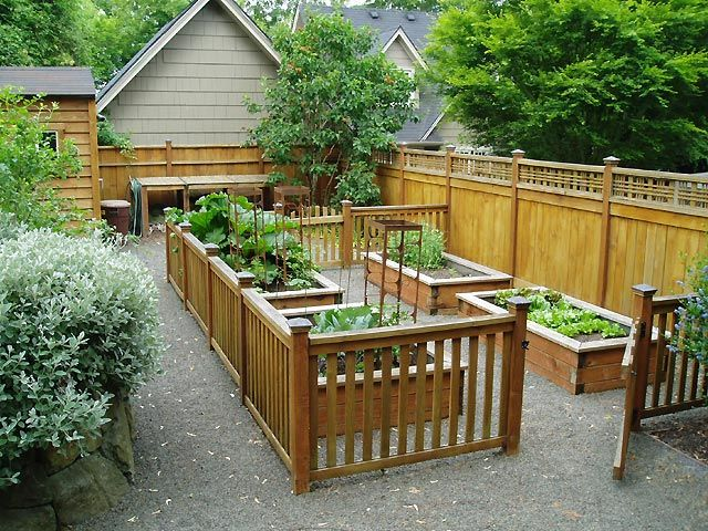 Raised Vegetable Beds Backyard Pinterest