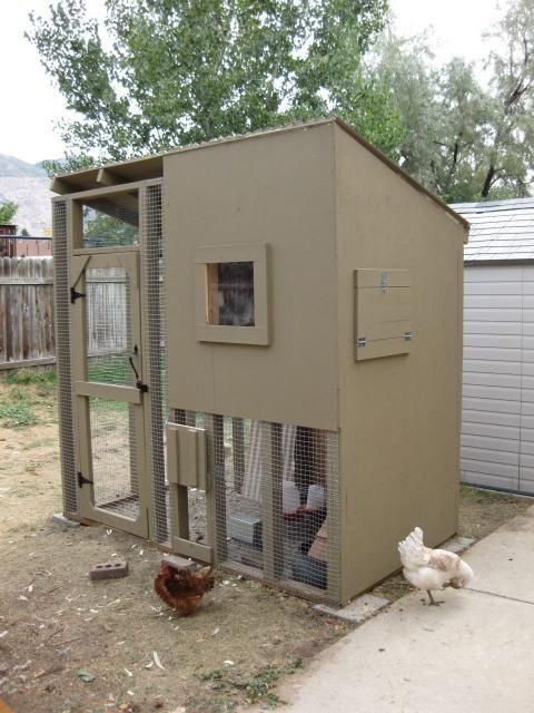 backyard chicken coop chicken stuff pinterest