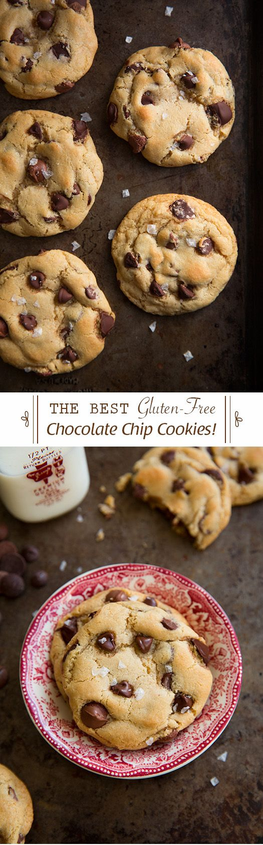 Gluten-Free Chocolate Chip Cookies {The Best!} - No one even knew they ...