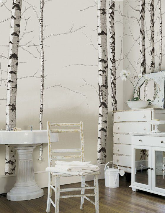 birch trees neutral wall mural future house pinterest