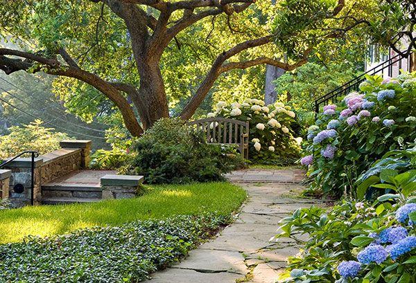 Part shade garden ideas photograph hydrangeas and grou for Part shade garden designs