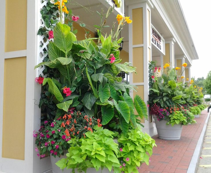 24 Plain Seoane Landscape Design Inc And Garden Center