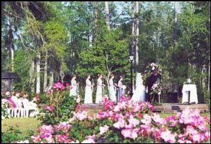 Cypress Gardens South Carolina Charleston Sc Weddings Pinterest