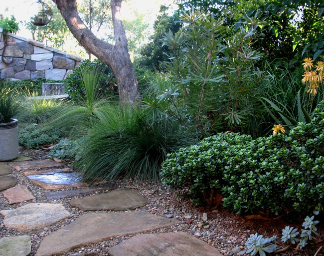Pin by lisa bragg on small gardens pinterest for Courtyard gardens australia