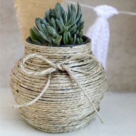 hemp wrapped jar as succulent planter
