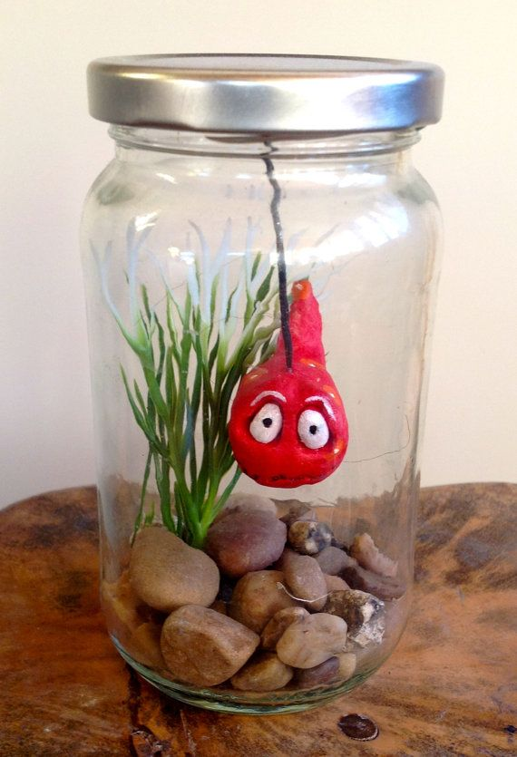 Fish in a jar arnold for Fish in a jar
