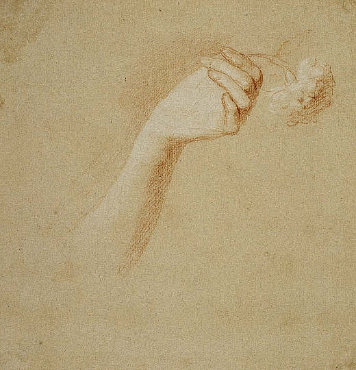 Allan ramsay a lady 39 s left hand holding a rose study for for Hand holding a rose drawing
