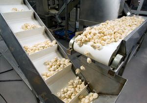 analysis of the food processing industry Current status and options for biotechnologies in food processing  sections relevant to biotechnology applications in food processing:  analysis of the reasons.