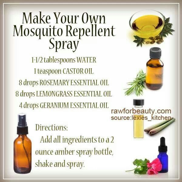 pics Essential Oils For Lice