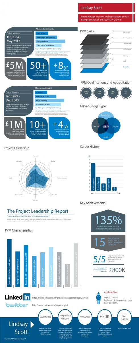 a project manager infographic cv project management